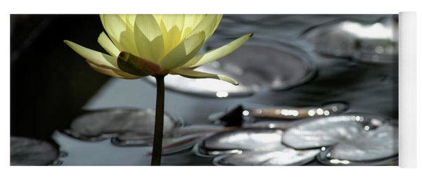 Water Lily And Silver Leaves Yoga Mat