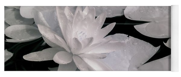 Water Lily In Infrared Yoga Mat