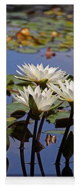 Water Lily Reflections Yoga Mat