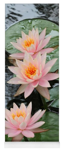 Water Lily Trio Yoga Mat