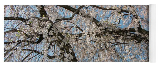 Weeping Cherry In Spring Yoga Mat