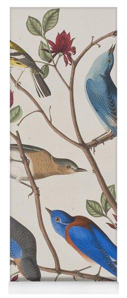 Western Blue-bird Yoga Mat
