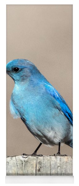 Mountain  Bluebird Yoga Mat