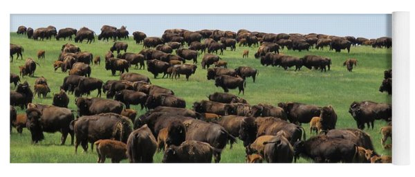 Western Kansas Buffalo Herd Yoga Mat