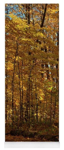 Westridge Lower Park In Autumn 2 Yoga Mat