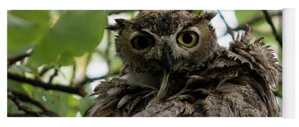 Wet Owl Yoga Mat