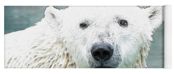 Wet Polar Bear Yoga Mat