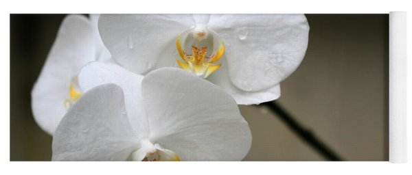 Wet White Orchids Yoga Mat
