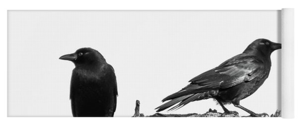 Which Way Two Black Crows On White Square Yoga Mat