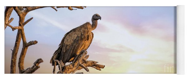 White-backed Vulture At Sunset In Kruger National Park Yoga Mat