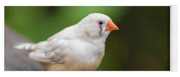White Bird Standing On Deck Yoga Mat