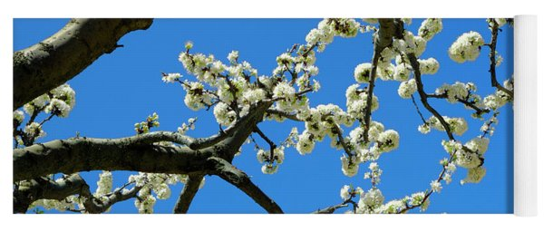 White Blossom Branches Yoga Mat