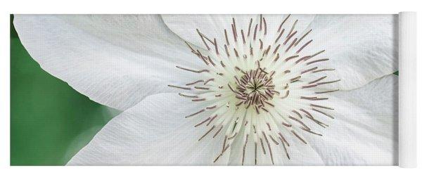 White Clematis Flower Garden 50121 Yoga Mat