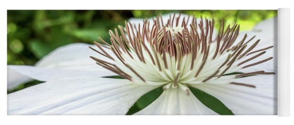 White Clematis Flower Garden 50146 Yoga Mat