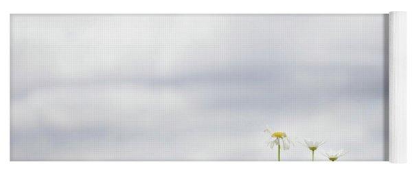 White Daisies In Summer Sunshine Yoga Mat