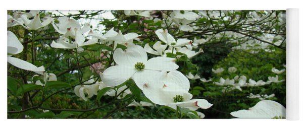 White Dogwood Flowers 6 Dogwood Tree Flowers Art Prints Baslee Troutman Yoga Mat