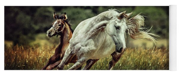 White Horse And Foal Running Wild Yoga Mat