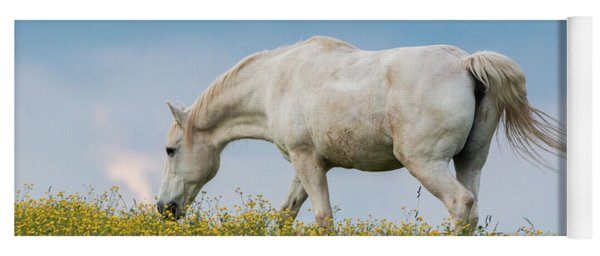 White Horse Of Cataloochee Ranch 2 - May 30 2017 Yoga Mat
