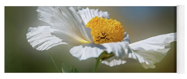 Yoga Mat featuring the photograph White Matilija Poppy In Porter Ranch by Lynn Bauer