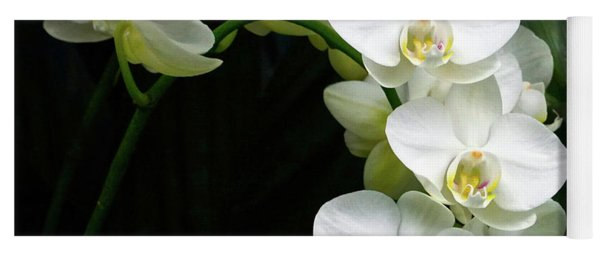 White Moth Orchid Array Yoga Mat
