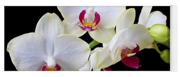White Orchids Yoga Mat