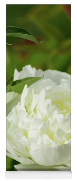 Yoga Mat featuring the photograph White Peony by Cristina Stefan