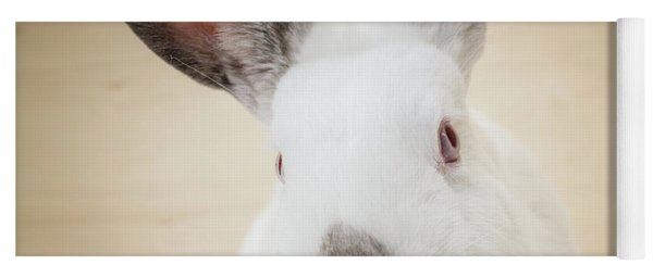 White Rabbit Closeup Yoga Mat