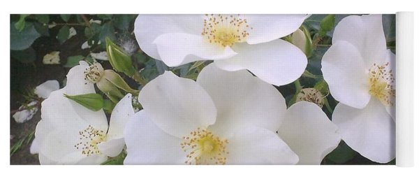 White Roses Bloom Yoga Mat