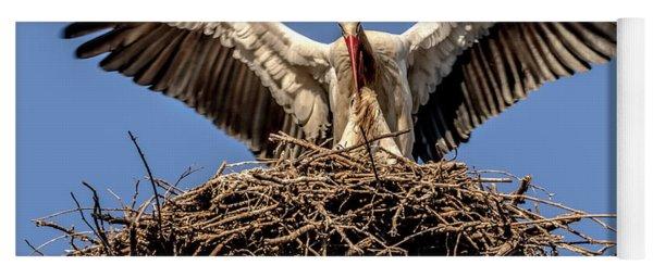 White Storks Of Fagagna 7 Yoga Mat
