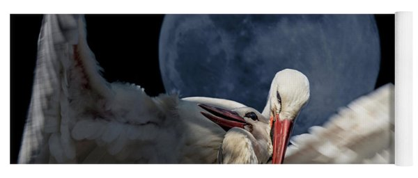 White Storks Of Fagagna With Full Moon Yoga Mat