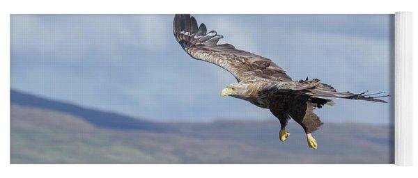 White-tailed Eagle On Mull Yoga Mat