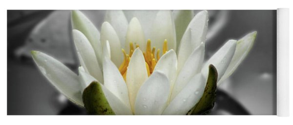 White Water Lily Black And White Yoga Mat