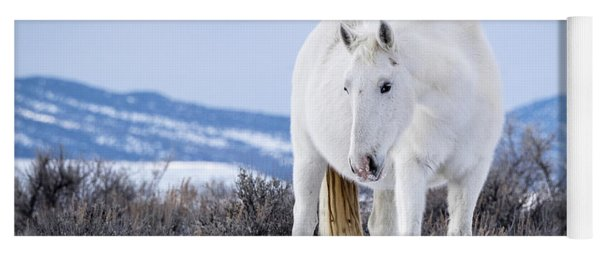 White Wild Horse Mystic Of Sand Wash Basin Yoga Mat