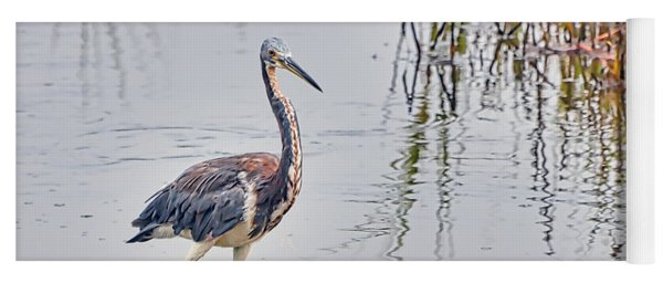Wild Birds - Tricolored Heron Yoga Mat