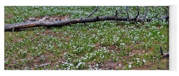 Wild Flower Landscapes 1 Yoga Mat