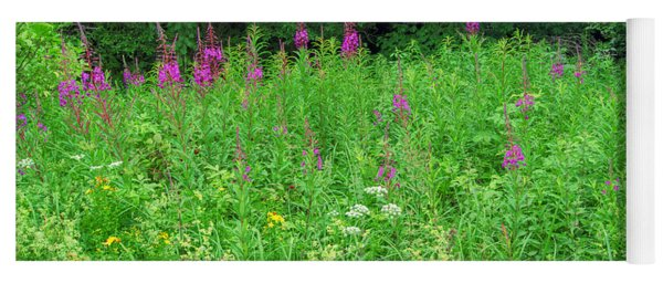 Wild Flowers And Shrubs In Vogelsberg Yoga Mat