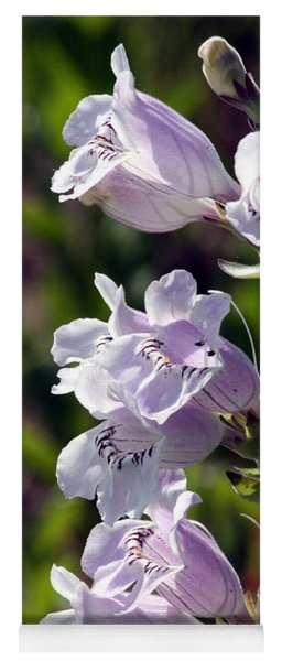 Beardtongue Foxglove Flowers Yoga Mat