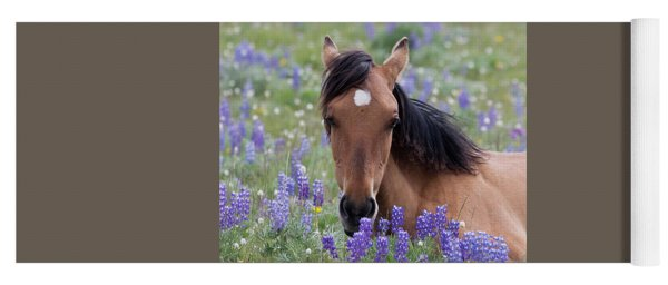 Wild Horse Among Lupines Yoga Mat
