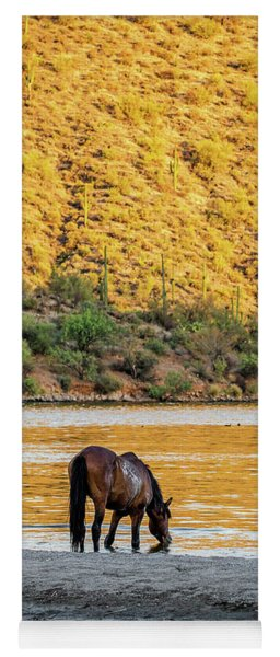 Wild Horse Drinking Water From River Yoga Mat