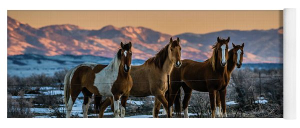 Wild Horse Group Yoga Mat