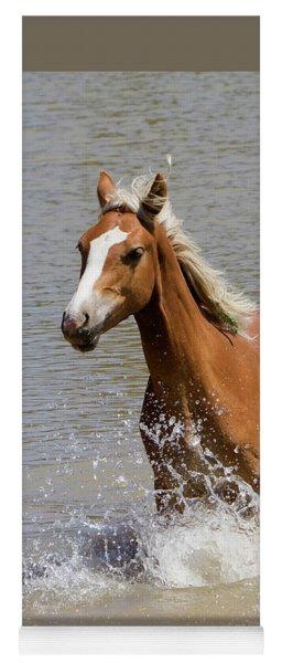 Wild Horse Splashing At The Water Hole Yoga Mat