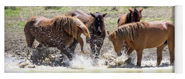 Wild Mustang Stallions Playing In The Water - Sand Wash Basin Yoga Mat