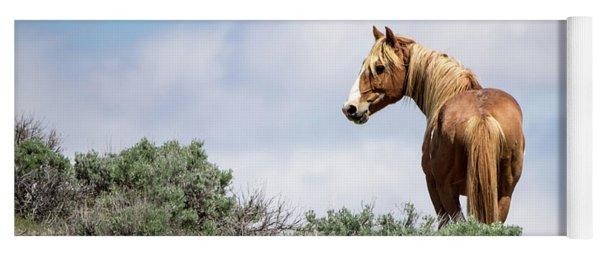 Wild Mustang Stallion Of Sand Wash Basin Yoga Mat