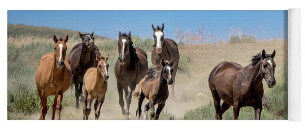 wild mustangs on the run to the water hole in Sand Wash Basin Yoga Mat