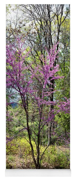 Wild Redbud In A Country Garden Yoga Mat
