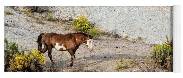 Yoga Mat featuring the photograph Wild Stallion Of Sand Wash Basin, Raindance by Nadja Rider