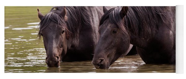 Wild Stallions At The Water Hole Yoga Mat