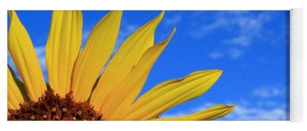 Yoga Mat featuring the photograph Wild Sunflower by Shane Bechler