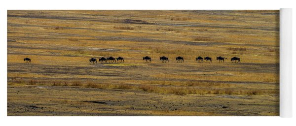 Wildebeest At Ngorongoro Yoga Mat
