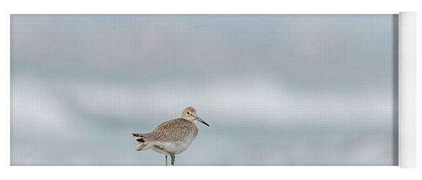 Willet On One Leg Yoga Mat